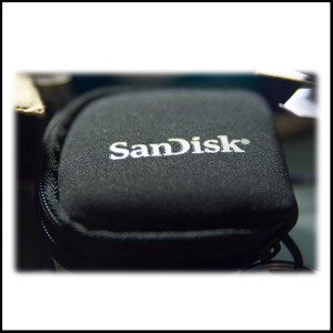 Mission-2-Organize-camera-memory-card-pouch